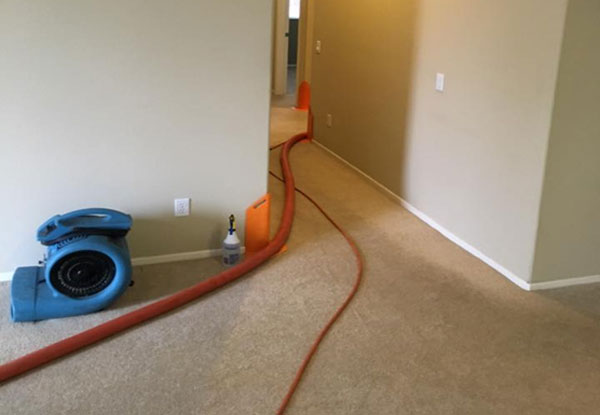 Temecula Carpet Cleaning Service