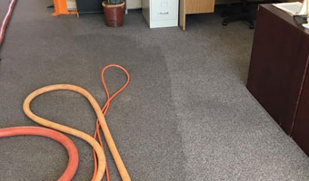 Carpet Cleaner Corona Amp Norco Ca Carpet Cleaning Stain